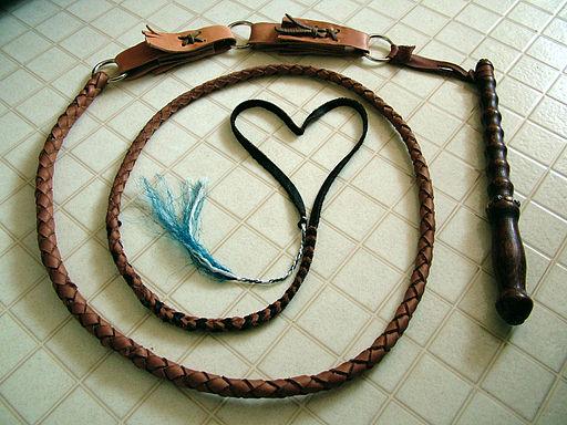 Slovak_whip_(heart)