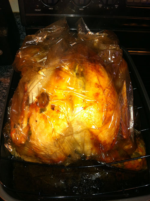 The turkey, fresh from the oven.