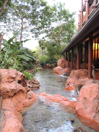 Stream at Disneyland