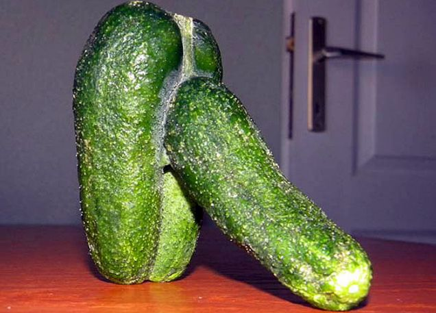 Erotic cucumber